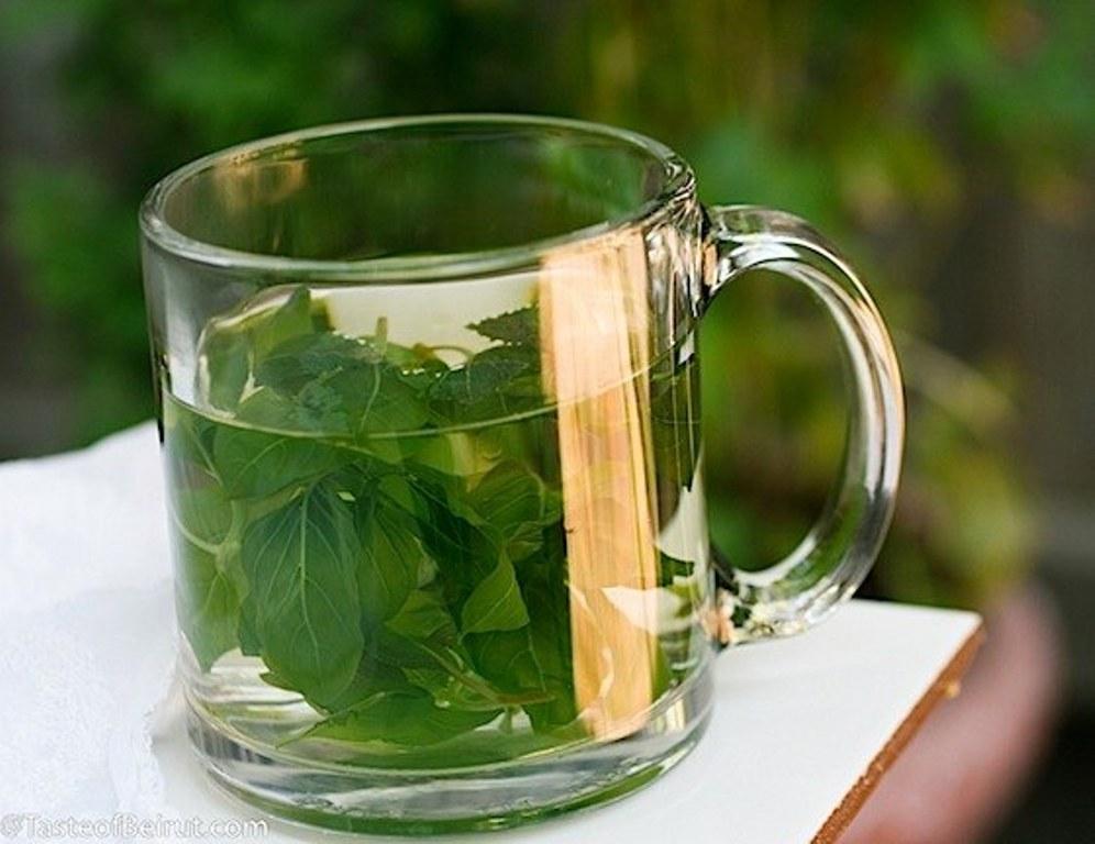 Basil-tea